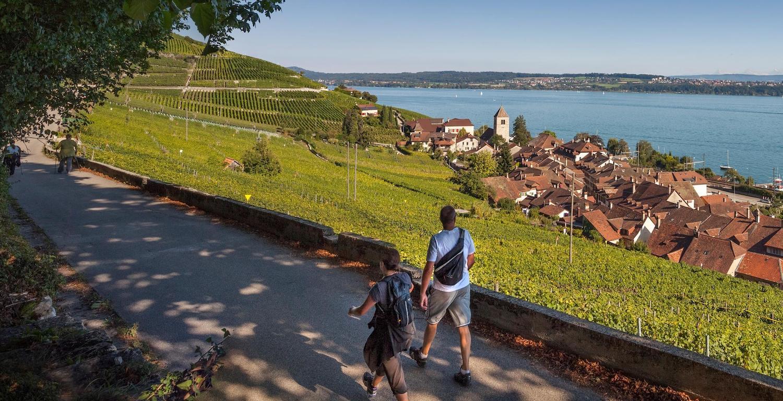 Chemin des vignes, au bord du lac de Bienne © Suisse Mobile