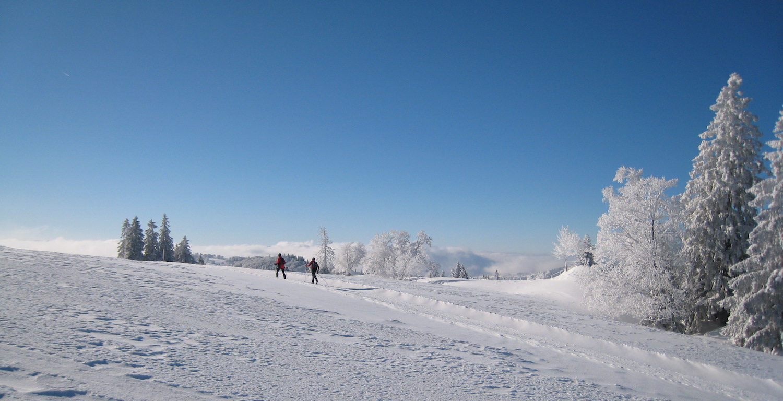 Ski de fond au Mont Racine, Jura suisse